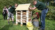 W Olsztynie powstanie hotel dla pszczół