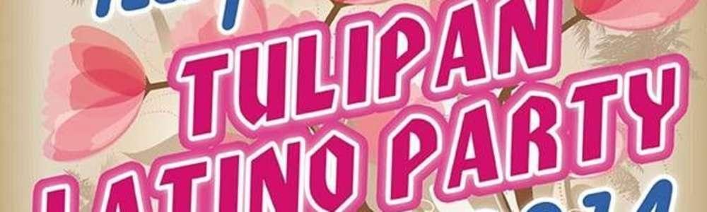Tulipan latino party. Kobiety na parkiety!