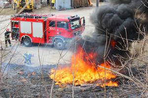 Pożar trawy to nie zabawa: Giną ludzie i zwierzęta. Starty szacuje się na ponad 3 miliony złotych