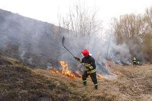 Pożary traw to cykliczny problem