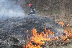 Niebezpieczne wypalanie traw