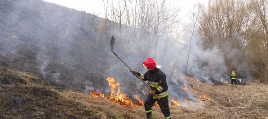 Wypalanie traw to coroczny problem nie tylko strażaków.