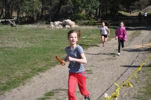 Kurzętnickie drużyny zdominowały powiatowe bieganie