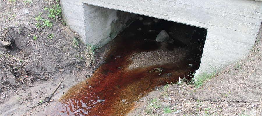 """Tak wyglądała """"woda"""" przy przepuście pod droga krajową"""