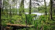 Jezioro Pajtuńskie, czyli Barabaszowe