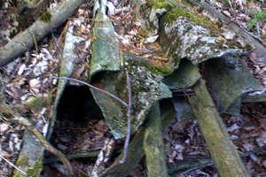 Wojtkowo: Azbest w lesie