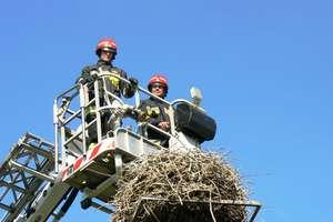 Strażacy pomogli bocianowi wrócić do gniazda