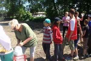 Uczniowie z Gwiździn sadzili kukurydzę