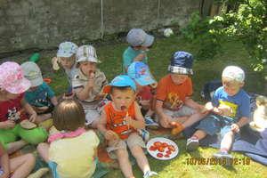Przedszkolaków piknik na wsi