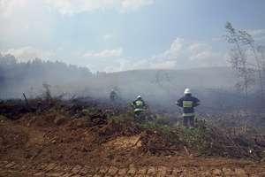 W 30-stopniowym upale gasili płonącą trawę, blisko był las