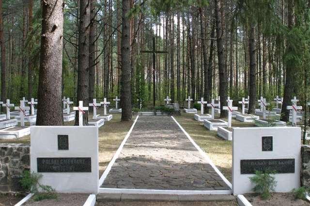 Polski cmentarz wojskowy w Kostiuchnówce na Wołyniu, gdzie w lipcu 1916 roku żołnierze Legionów Polskich starli się z oddziałami rosyjskimi. - full image
