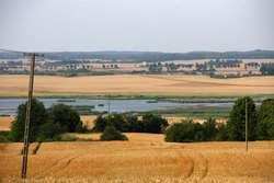 Rezerwat Przyrody - Polder Sątopy-Samulewo