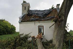 Złamane drzewo uszkodziło kaplicę w Łędławkach