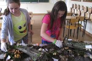 Na grzyby, na grzyby... w szkole w Lipinkach