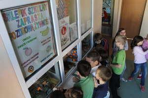 Zmiany w żywieniu dzieci i młodzieży od nowego roku szkolnego