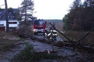 Wichura na Warmii i Mazurach: Prawie 2 tys. mieszkańców wciąż bez prądu!
