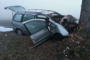 Zginął 43-letni kierowca. Uderzył w drzewo na krajowej 51