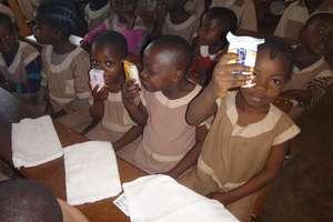 Uczniowie z Jedynki opiekują się szkołą w Kamerunie