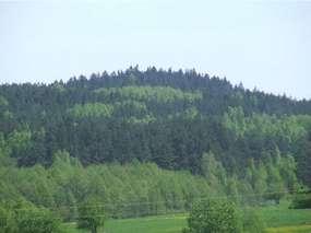 Rezerwat Przyrody Piłackie Wzgórza