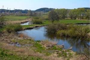 Ekologiczna akcja dla naszej rzeki Drwęcy