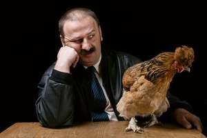 To on wymyślił pana Józka i jego absurdalny świat kurczaków