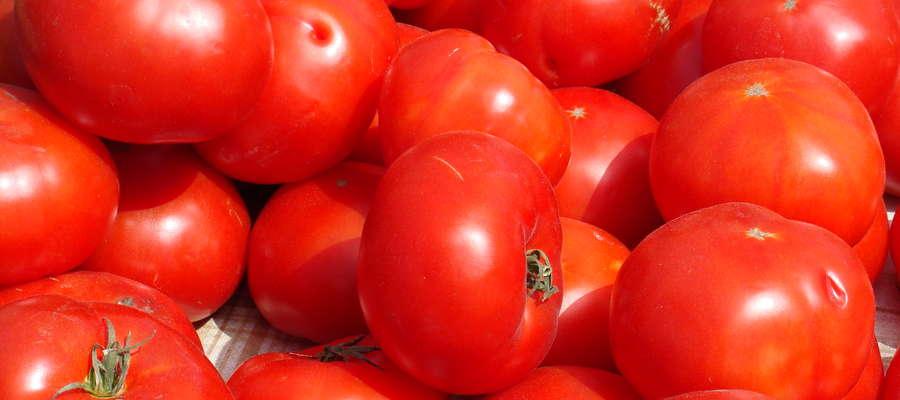 O nowych fungicydach w integrowanej ochronie owoców i warzyw dowiemy się 9 kwietnia w Olsztynie