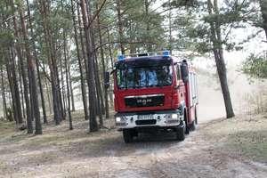 Susza w lasach. Duże ryzyko pożarów