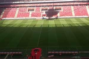 Co córka menedżera Stomilu Olsztyn robi na Stadionie Narodowym?