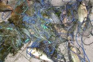 42-latek poławiał nielegalnie ryby