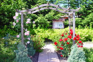 W Marcinkowie można obejrzeć piękne ogrody i motylarnię