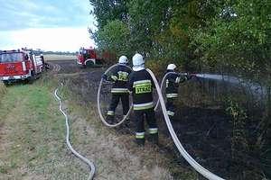 Kolejny groźny pożar zboża i lasu w powiecie olsztyńskim. Zobacz film