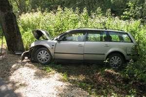 Sarna uciekła, kierowca uderzył w drzewo