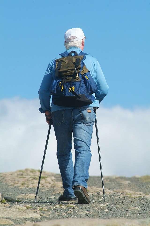 """Nordic walking, czyli """"chodzenie z kijkami"""" jest coraz bardziej popularnym sportem wśród seniorów - full image"""
