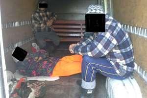 Jechali busem na krzesłach i ławeczce ogrodowej, kierowca stracił prawo jazdy
