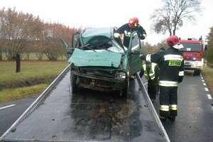Daewoo tico zderzyło się z łosiem. Kierująca autem w szpitalu