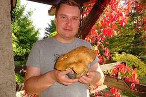 Przymrozki nie przestraszyły grzybów? Kolejne okazy z lasów regionu