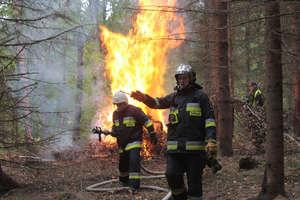Strażacy gasili las. Na szczęście były to ćwiczenia