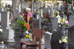 Chcesz odwiedzić cmentarz w innym mieście? Oto lista zmian organizacji ruchu wokół nekropolii w regionie