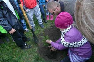 Obchody Dnia Drzewa w Szkole Podstawowej im. Ziemi Warmińskiej w Bisztynku