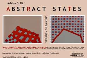 Wystawa Ashleya Collina Abstract - States