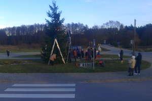 Ogromna choinka świąteczna we wsi Połom