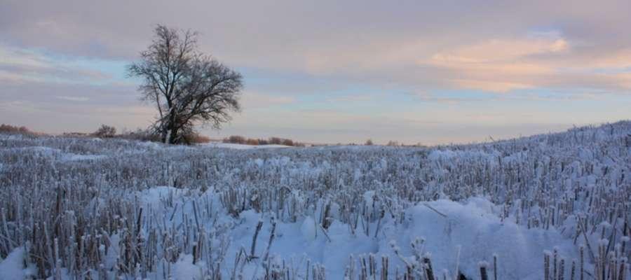 Białe pola pod Giżyckiem