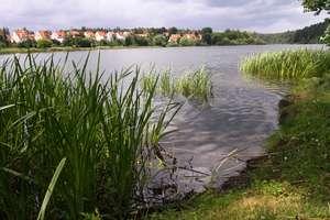 Najczystsze jeziora na Warmii i Mazurach. I klasa czystości