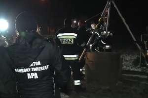Strażacy pospieszyli na ratunek kocięciu. Wpadło do 35-metrowej studni