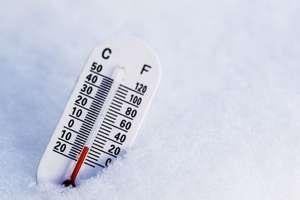 Pomóż przetrwać zimę