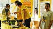 Warsztaty, konsultacje i prezentacje, czyli Dzień Otwartych Drzwi na UWM