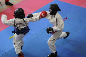 Kolejne zawody taekwondo w hali w Bezledach