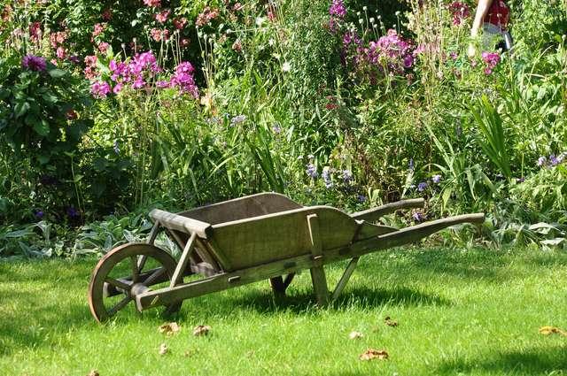 Stwórz swój wymarzony ogród - full image