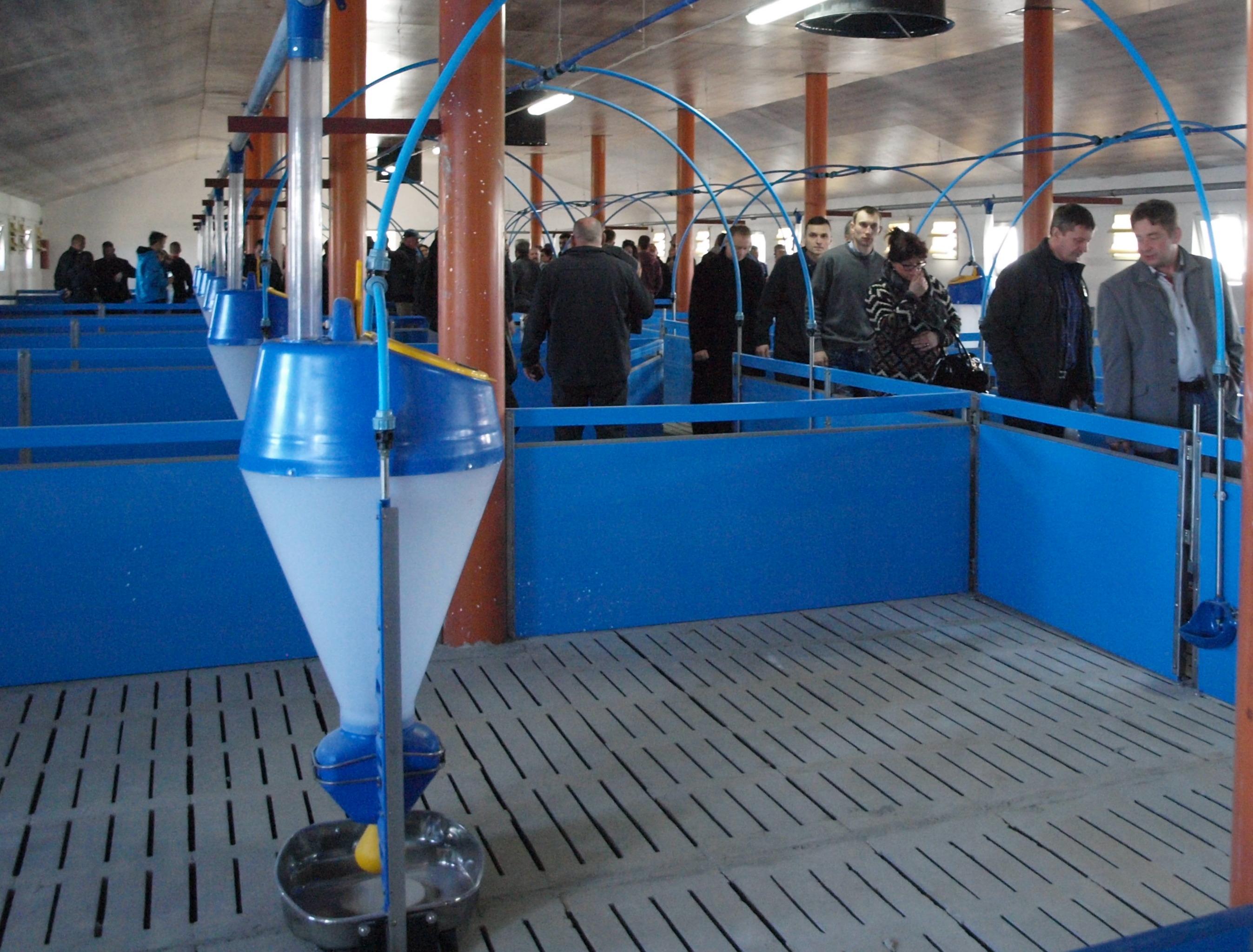Ogromnie Otwarcie chlewni w gminie Lutocin - nowy obiekt na 1 500 tuczników RG35