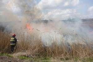 91 strażaków interweniowało podczas 17 akcji w powiecie